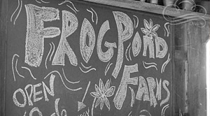 Frog Pond Farms